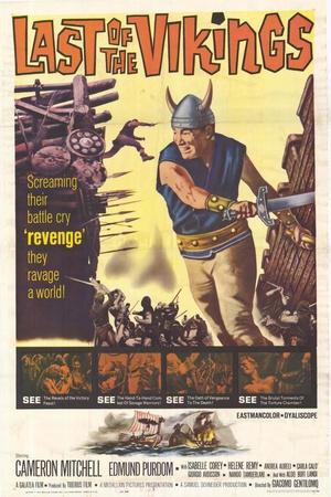 最后的维京海盗